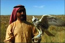 jeque arabe2