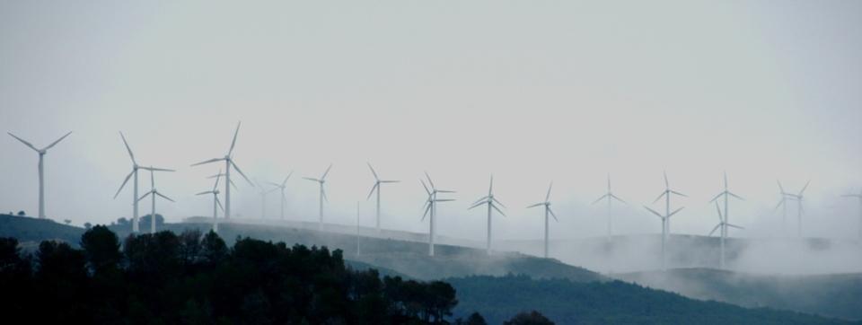 windmolens © edwin winkels